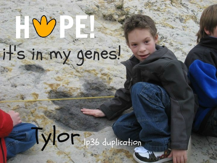 tylor_1p36_duplication.syndrome